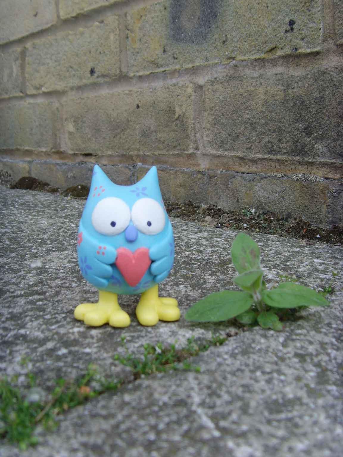 Lovely Owly