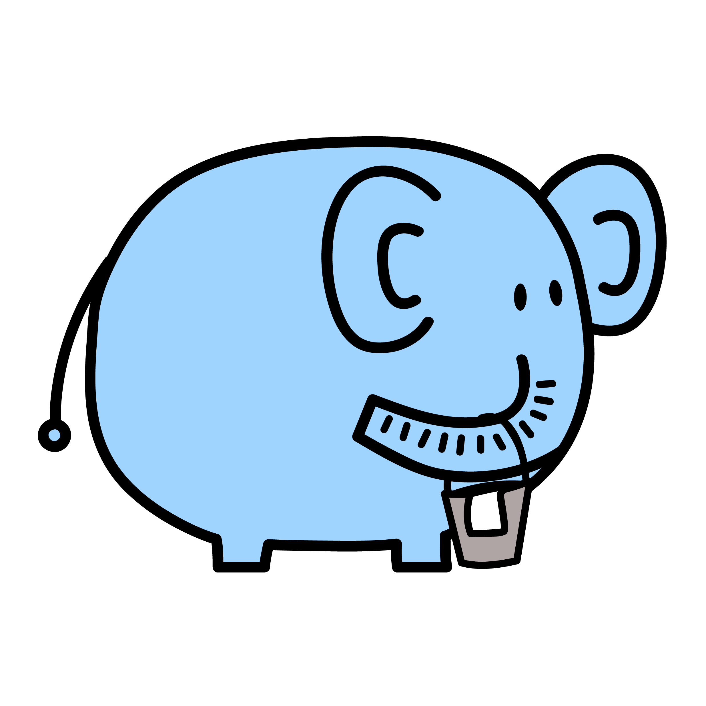 cleaning elephant